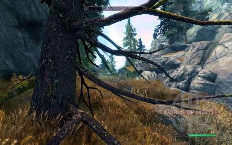 Pin réaliste pour Skyrim deuxième écran