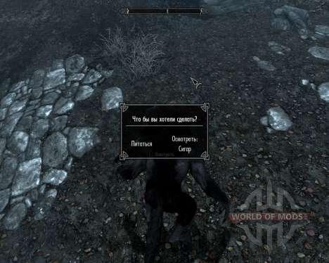 Durchsuchen Sie die Karte für den Werwolf und Va für Skyrim