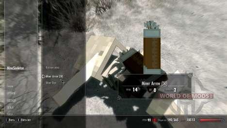 MinerFriends NPC von minecraft für das vierte Skyrim-Screenshot