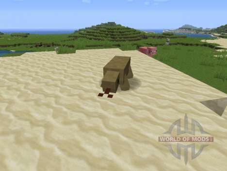 Reptile Mod pour Minecraft