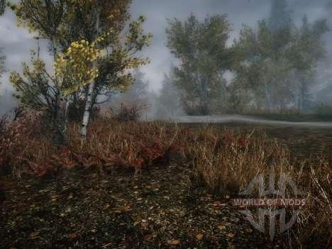 Mehr Gras-Gras für Skyrim zweiten Screenshot