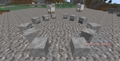 Skulls Plus für Minecraft
