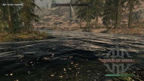 Pure eaux-mod, ce qui améliore l'eau pour Skyrim