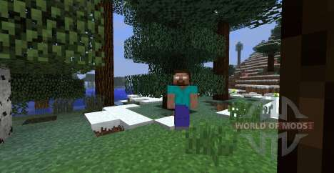 Herobrine Mod pour Minecraft