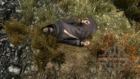 L'élixir de Dieu pour Skyrim deuxième écran