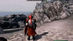 Rüstung und Waffen dragon Knight von dota 2
