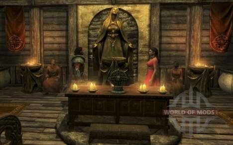 Der Begleiter Des Erenia Cetonia für Skyrim