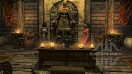 Le Compagnon De Erenia Cetonia pour Skyrim
