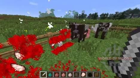 Sang pour Minecraft