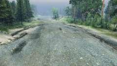 La pierre concassée de la route pour Spin Tires
