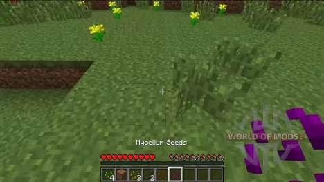 Différentes graines pour Minecraft
