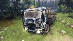 KamAZ-6520 camo v3 für Spin Tires