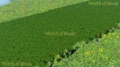 Neue Texturen von gras und Heu