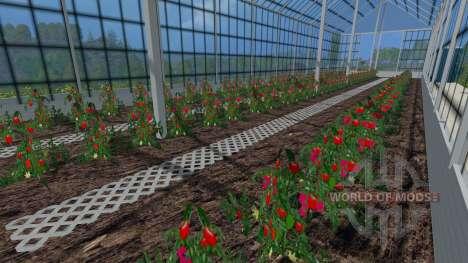 Les serres pour les tomates et les concombres pour Farming Simulator 2015