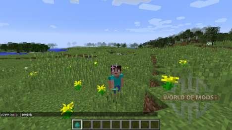Female Gender Option für Minecraft