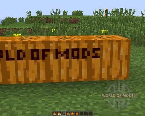 Pumpkin Carvier für Minecraft