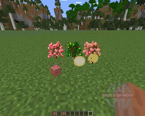 MoarFood pour Minecraft