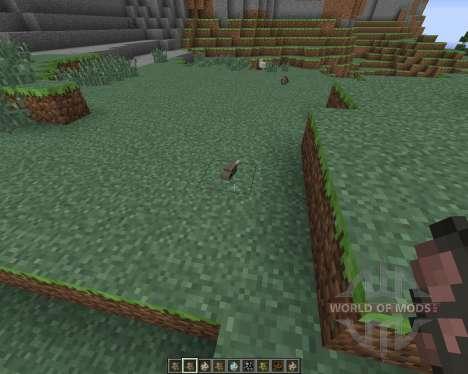More Nature für Minecraft