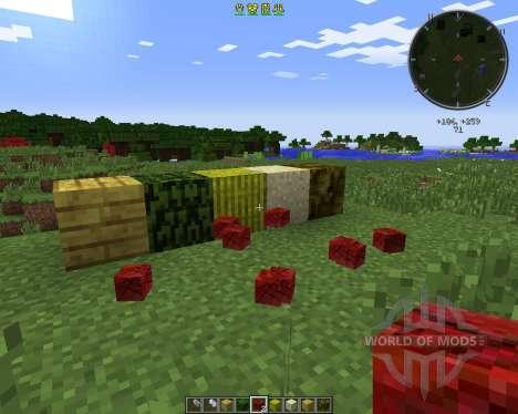 Project Zulu pour Minecraft