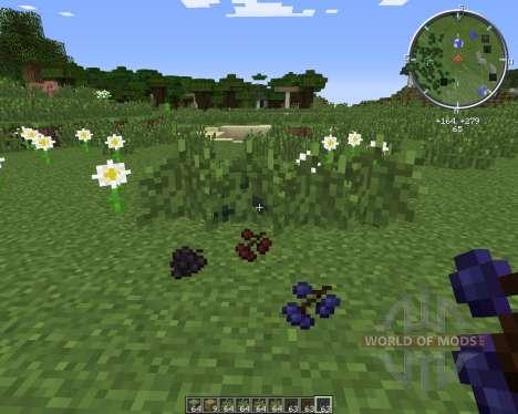 MC BerryBush pour Minecraft