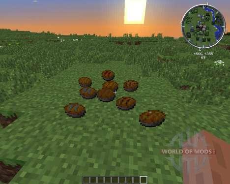 PieCraft pour Minecraft