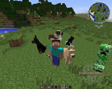 DoggyStyle pour Minecraft