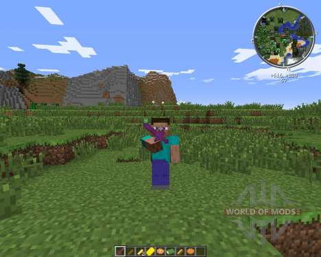 New Foods 2 pour Minecraft