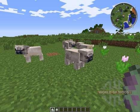 Pug Life für Minecraft