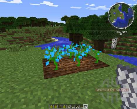 Growing Flowers für Minecraft