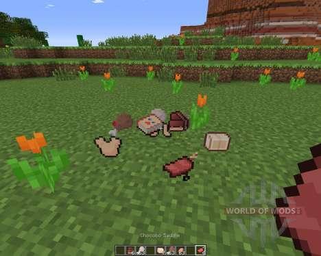 ChocoCraft pour Minecraft