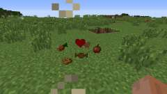 Gods Sacred Items pour Minecraft