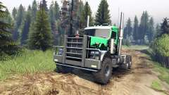 Peterbilt 379 v1.1 green and black pour Spin Tires