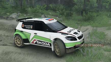 Skoda Fabia S2000 für Spin Tires