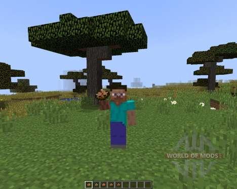 Larrys Stews pour Minecraft