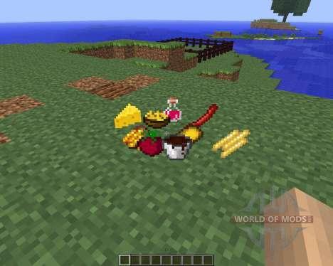 Food Plus [1.5.2] für Minecraft