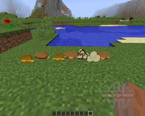 Birds Foods [1.8] für Minecraft