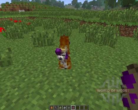 Pokemon: Disciples of Corruption [1.6.4] pour Minecraft