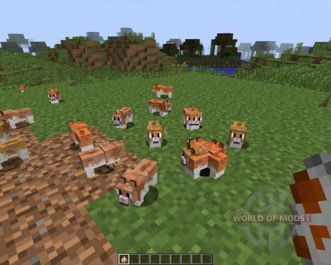 Invincible Hamster [1.7.2] pour Minecraft