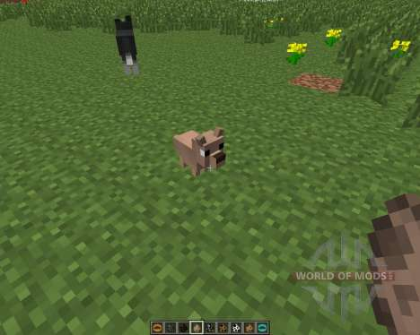 Copious Dogs [1.6.4] pour Minecraft