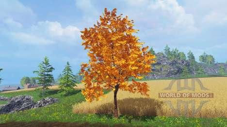 Bäume im Herbst für Farming Simulator 2015