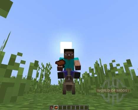 Farble pour Minecraft