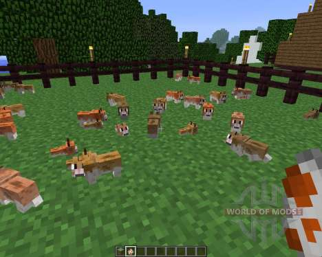Invincible Hamster [1.5.2] pour Minecraft
