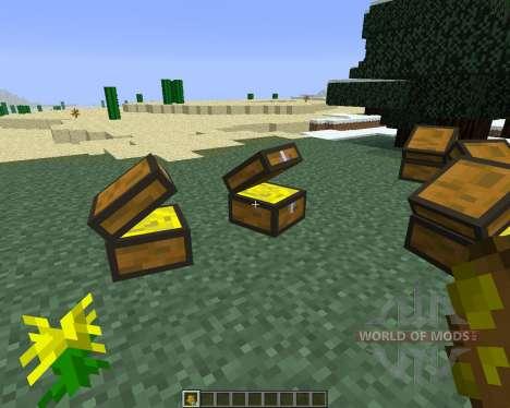 Treasure Chest [1.6.4] für Minecraft