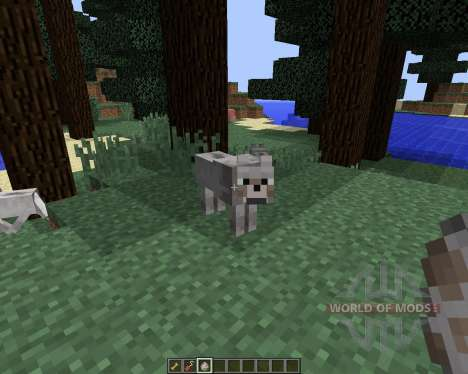 Sophisticated Wolves [1.8] pour Minecraft