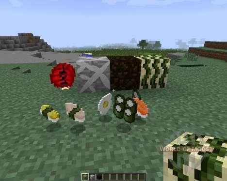 Sushi Craft [1.7.2] für Minecraft