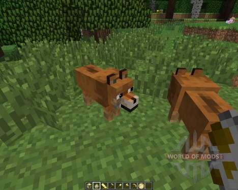 Doge [1.6.4] für Minecraft