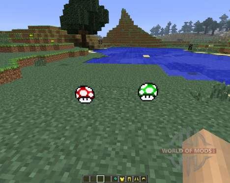 Super Mario [1.6.4] für Minecraft
