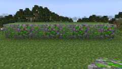 Magical Experience [1.7.2] pour Minecraft