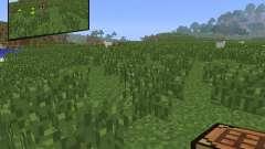 Rearview Mod [1.6.4] für Minecraft