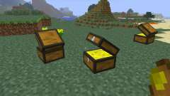 Treasure Chest [1.6.4] für Minecraft